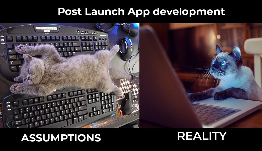 APP-DEVELOPMENT-Assumption vs Reality